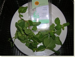 11-24-08_organic mint